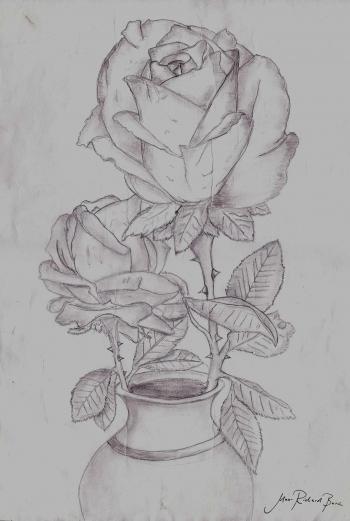 Gezeichnete Bilder Mit Bleistift Blumen Hylen Maddawards Com
